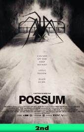 possum movie poster
