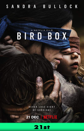 bird box movie poster vod